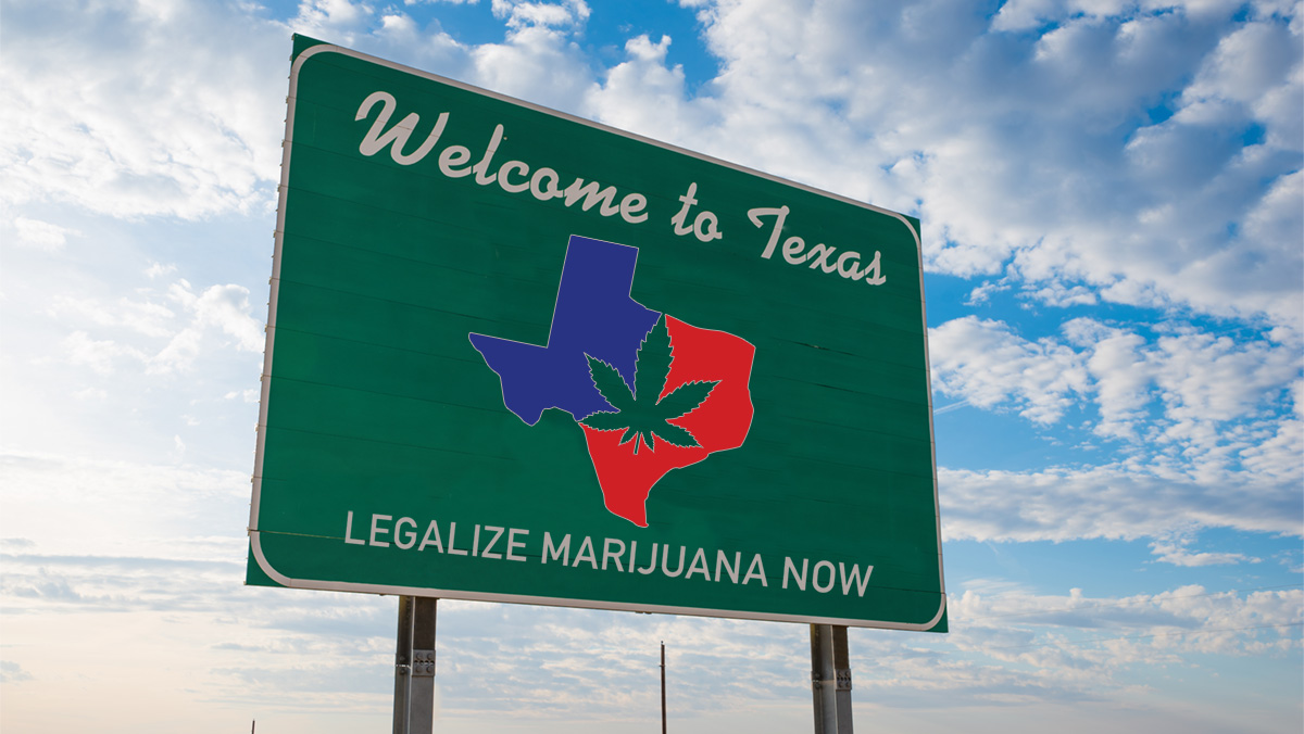 Legalize Marijuana Now!